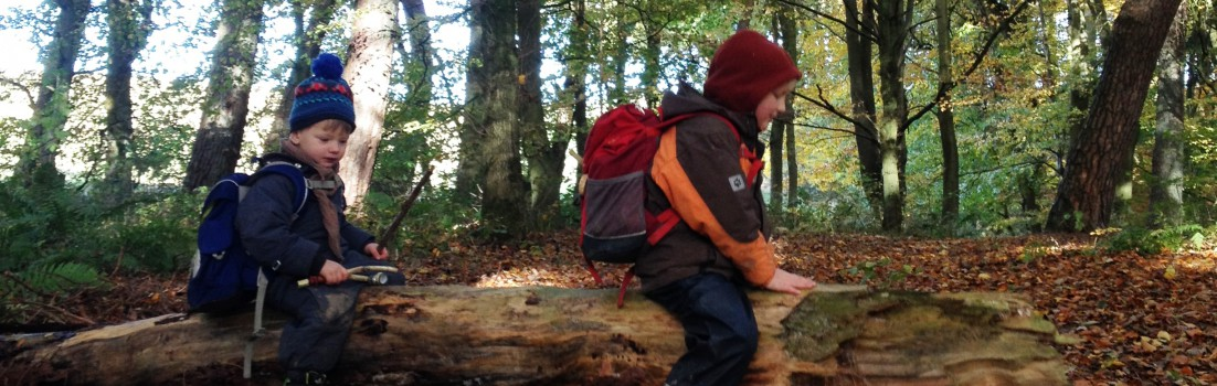 Reiten auf dem Baumstamm